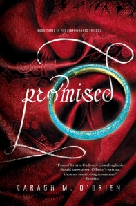 Discussion: Promised – Caragh O'Brien