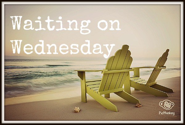 Waiting on Wednesday: Just Like Fate – Suzanne Young and Cat Patrick